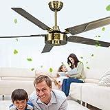 ZHYWJ Ventilateur de Plafond Commercial Ventilateur Silencieux Black Net Salle à Manger Simple Vintage sans...