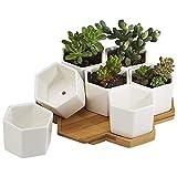 XZANTE 7 Pack 2,75 Pouces Blanc Moderne en Ceramique Petit Hexagone Succulent Cactus Fleur en Pot pour...