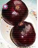 30pcs Délicieux Turquie non-OGM géant grenade graines ourdoor graines d'arbres fruitiers graines de fruits...