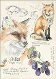 Forex 120 x 170 cm: Red Fox & Blackberries de Jennifer Parker/World Art Group