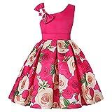 Moneycom Jupe Bebe Fille Anniversaire Tulle Robe Ceremonie Mariage Sunny Fashion Floral Bébé Filles...