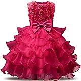 NNJXD Robe de Filles Gamins Volants Dentelles Robes de Mariage pour Les Parties Fleur Taille(110) Couleur Rose...