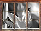 Stil.Zeit A Lilane Krokusblüte avec l'art de Coccinelle Rouge B & W Fenêtre en 3D Look, Mur ou Format...