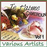 Je t'aime Cameroun, Vol. 1