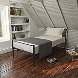 seul Cadre de lit en métal avec 2têtes de lit hôpital Style Base de lit Chambre à coucher meubles 0,9m