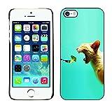Coque en plastique Housse de protection    iPhone 5 / 5S    Brocoli frais Vegan aliments pour chats Bite...