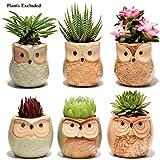 ZSTCO 6PCS Pots de Fleurs de planteur Succulents, Mini planteurs Mignons en céramique de Hibou avec Drainage...