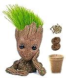 Kit prêt a pousser : Faites pousser les Cheveux de bébé Groot | Jeu Educatif Ecologique avec Pot de fleurs...