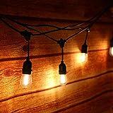 Tomshine ZVX9761602164924CA Extérieur Guirlandes Lumineuses 15PCS LED Ampoules Noir - 30W - 15 Mètres/49.9FT