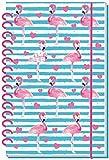 Agenda scolaire Flamingo 18/19-schulplaner, les élèves Agenda: minuterie avec spirales et gaufrage